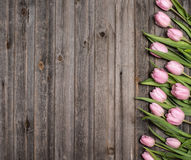 Pink tulips on old weathered wooden background. Spring flowers c Royalty Free Stock Image