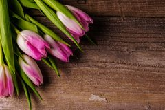 Pink tulips; on old wooden background. Bouquet of; pink tulips flowers on old wooden background; flat lay; copy space Stock Photography