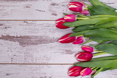 Pink tulips over shabby white wooden table. With space for text Royalty Free Stock Photography