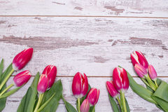 Pink tulips over shabby white wooden table. With space for text Stock Images