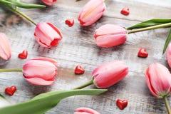 Pink tulips royalty free stock photos