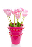 Pink tulips in a pink vase Royalty Free Stock Image