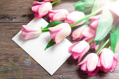 Pink tulips with postcard Stock Photo