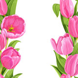 Pink tulips realistic background Stock Photos