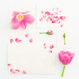 Pink tulips, roses and vintage paper cards isolated on white background. Flat lay, Top view. Stock Photos