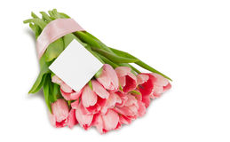 Pink tulips with satin ribbon and postcard Royalty Free Stock Photography