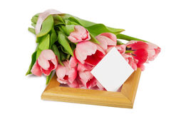 Pink tulips with satin ribbon on the wooden frame with postcard Royalty Free Stock Images