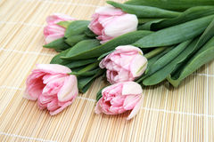 Pink tulips on a straw napkin. Five pink tulips on a straw napkin Royalty Free Stock Image
