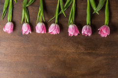 Pink tulips on table Royalty Free Stock Images