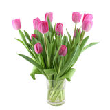 Pink tulips in a vase Royalty Free Stock Photos
