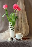 Pink tulips in a vase Royalty Free Stock Images