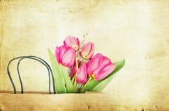Pink tulips on vintage background Stock Photo