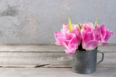 Pink tulips in vintage metal cup Stock Photography