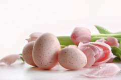 Pink tulips with water droplets and eggs Stock Photos
