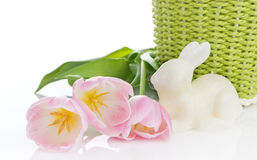 Pink Tulips And White Bunny Royalty Free Stock Image
