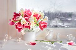 Pink tulips and white freesia flowers with ceramic Easter bunnie. S on the window board, sunshine after rain Royalty Free Stock Photo