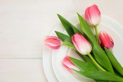 Pink tulips on white plates, white wooden background. Top view. Valentines day concept. Pink tulips on white plates, white wooden background. Top view royalty free stock photos