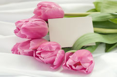 Pink tulips on white silk with card Stock Photo