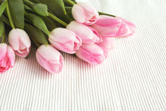 Pink tulips on white tablecloth. Toned Royalty Free Stock Photography