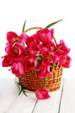 Pink tulips in a wicker basket Royalty Free Stock Photo