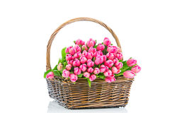 Pink tulips in the wicker Royalty Free Stock Photos