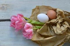 Pink tulips on wood background Stock Photo