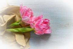 Pink tulips on wood background Stock Image