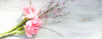 Pink tulips on wood background Stock Photos