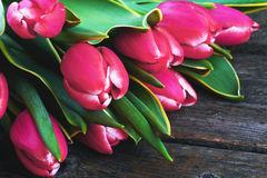 Pink tulips  on a wooden background Stock Images