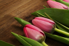 Pink tulips on a wooden background. Mother`s Day. Spring flowers Stock Photography