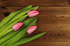 Pink tulips on a wooden background. Mother`s Day. Spring flowers Stock Photos