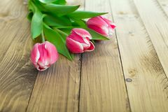 Pink tulips on a wooden background Royalty Free Stock Photos
