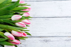Pink tulips on a wooden surface Royalty Free Stock Photo