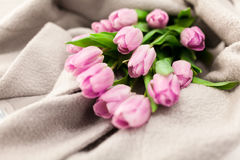 Pink tulips on wool , selective focus Royalty Free Stock Images