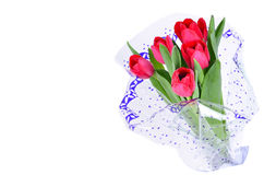 Pink tulips in wrapper paper Royalty Free Stock Image