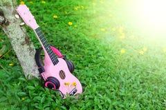 Pink ukulele music on green grass background Royalty Free Stock Images