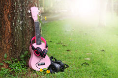 Pink ukulele music, headphones and black camera on green grass. Stock Images