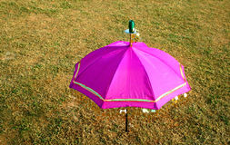 Pink umbrella. On to the green field Stock Images