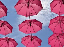 Pink umbrellas flying Stock Photography