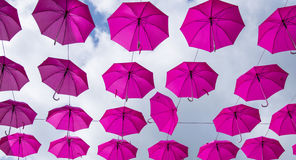 Pink Umbrellas Royalty Free Stock Photo