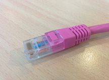 Pink UTP network cable Royalty Free Stock Photography