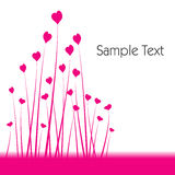 Pink valentine flowers Royalty Free Stock Images
