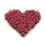 Pink valentine heart with flowers. Digital render of a pink valentine heart with flowers, perspective view Stock Images