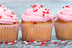 Pink Valentines Day cupcakes with sprinkles Royalty Free Stock Image