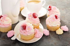 Pink vanilla and raspberry cupcakes Stock Images
