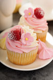 Pink vanilla and raspberry cupcakes Stock Photography