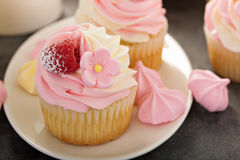 Pink vanilla and raspberry cupcakes Stock Image