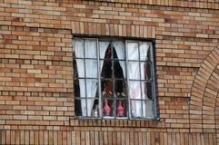 Pink Vases in Window. A pair of pink vases in a window in San Francisco's Chinatown royalty free stock images