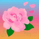 Pink vector flower Royalty Free Stock Images