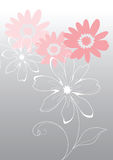 Pink vector flowers Stock Photos